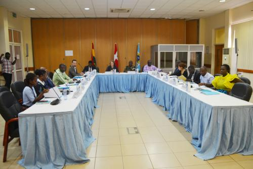 Reps at Steering Committee meeting, Accra